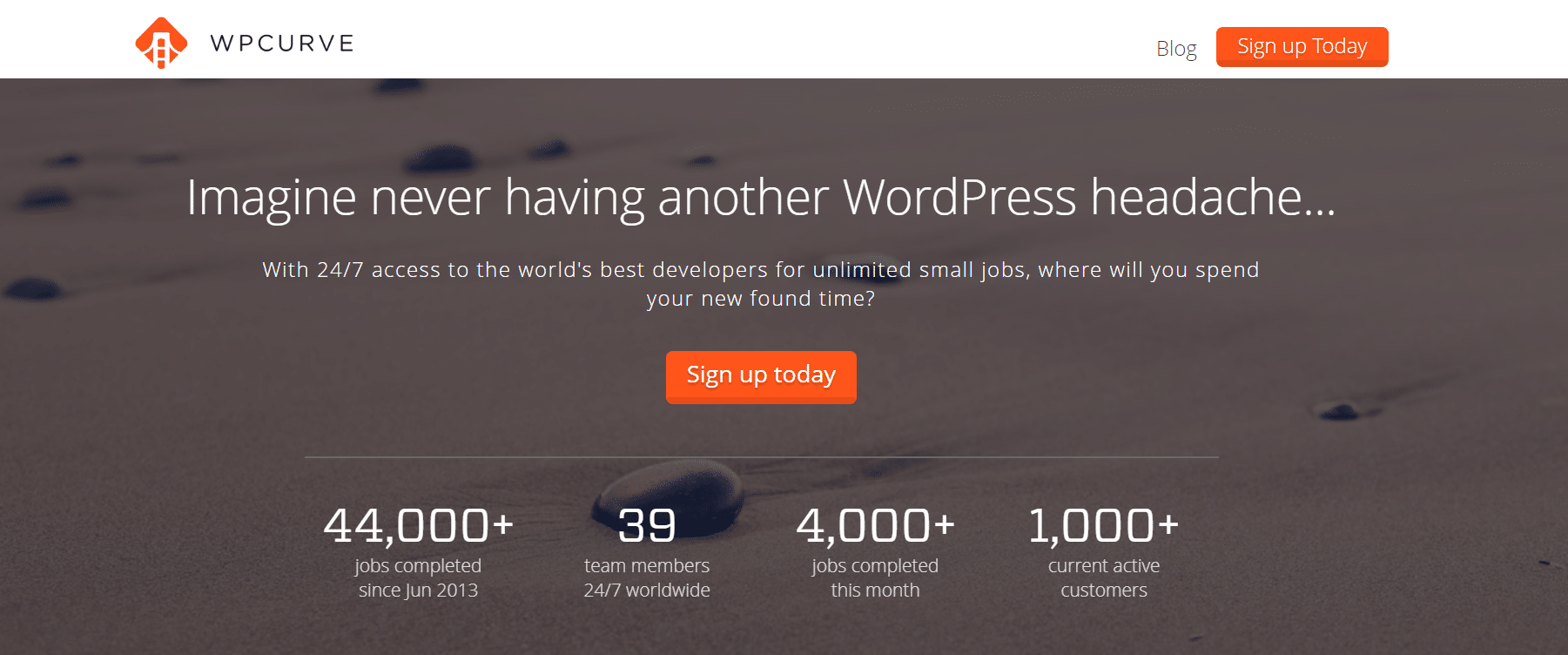 WP Curve - WordPress maintenance and support service